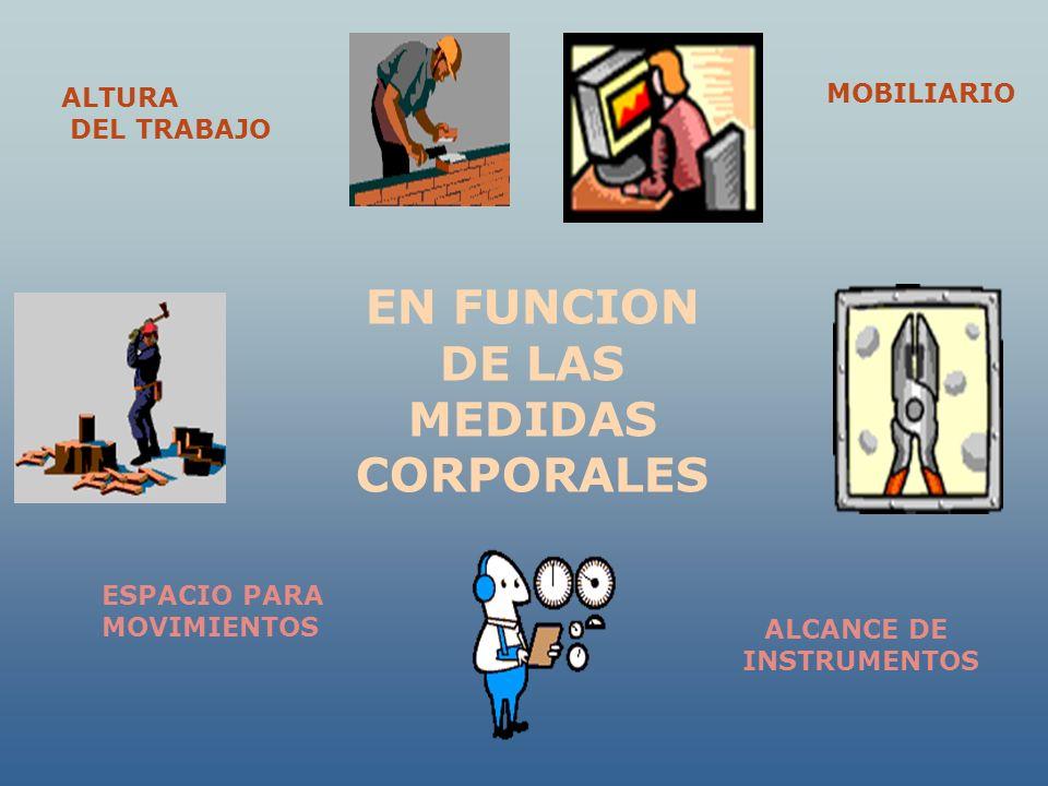 EN FUNCION DE LAS MEDIDAS CORPORALES
