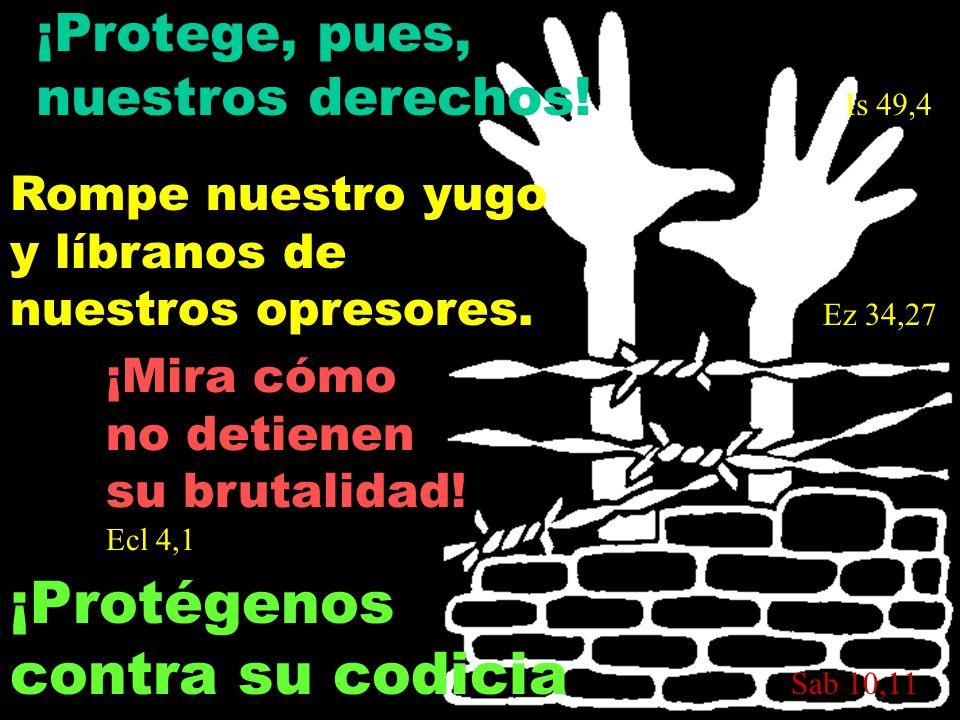 ¡Protege, pues, nuestros derechos! Is 49,4