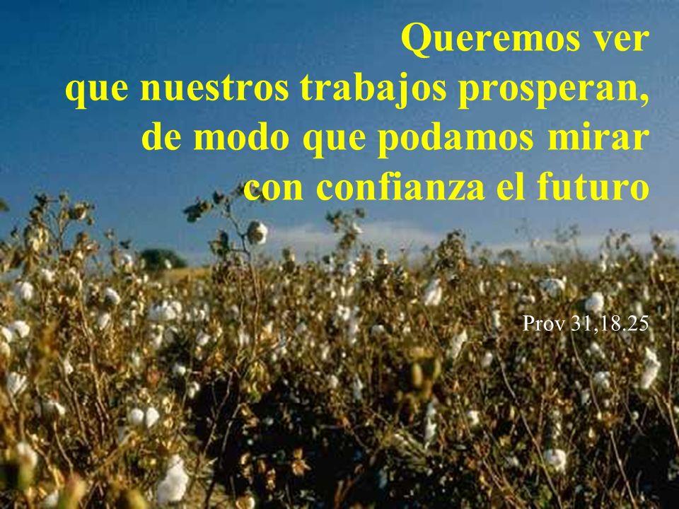 Queremos ver que nuestros trabajos prosperan, de modo que podamos mirar con confianza el futuro Prov 31,18.25
