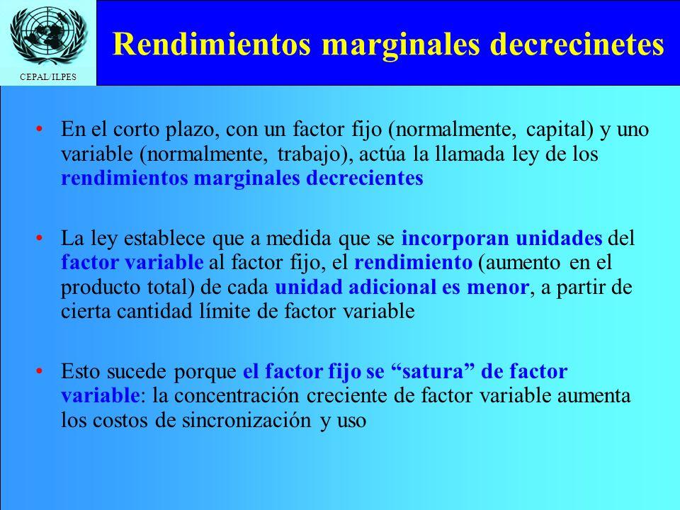 Rendimientos marginales decrecinetes
