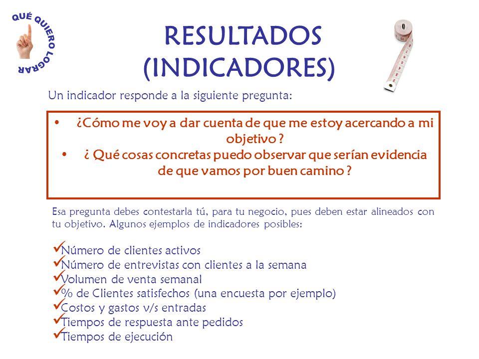 RESULTADOS (INDICADORES)