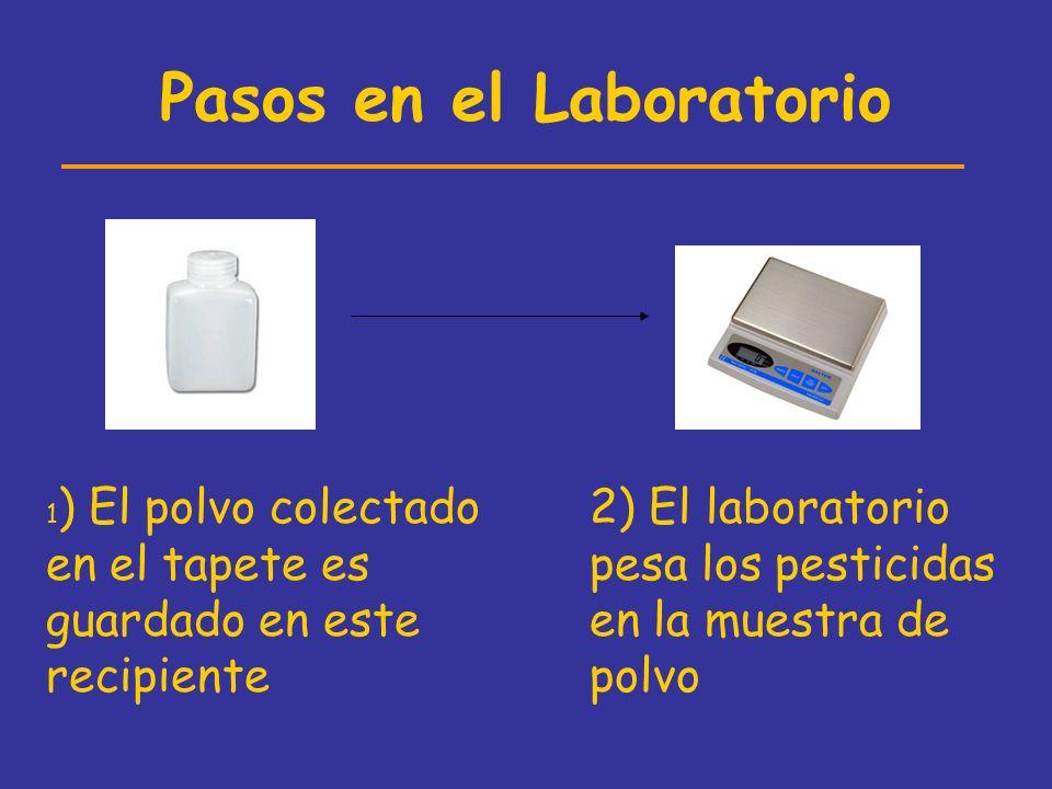 Pasos en el Laboratorio