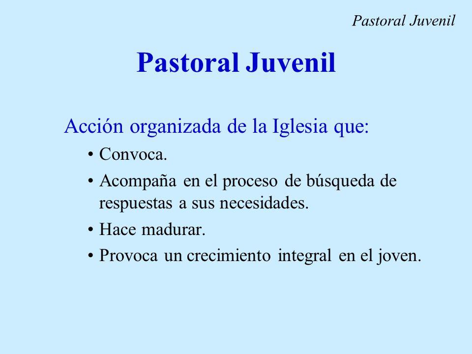 Pastoral Juvenil Acción organizada de la Iglesia que: Convoca.