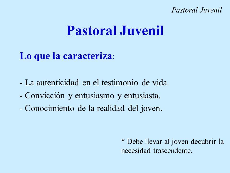 Pastoral Juvenil Lo que la caracteriza: