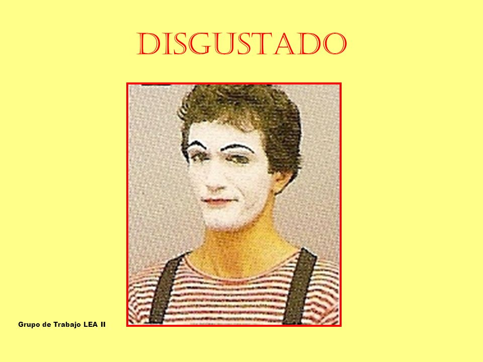 DISGUSTADO OFENDIDO-DISGUSTADO Grupo de Trabajo LEA II