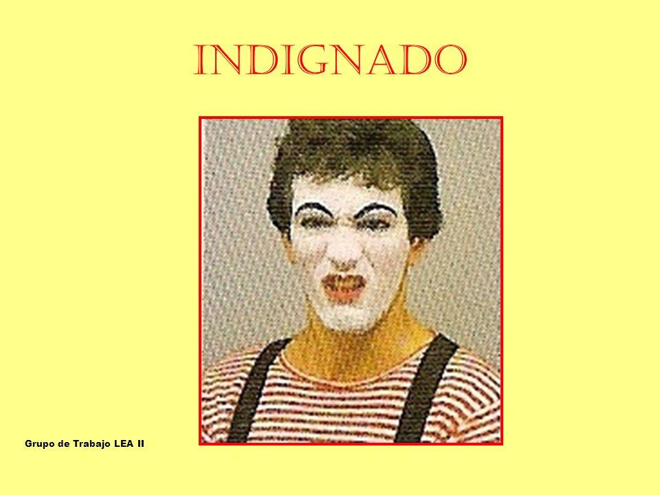INDIGNADO INDIGNADO-ASQUEADO Grupo de Trabajo LEA II