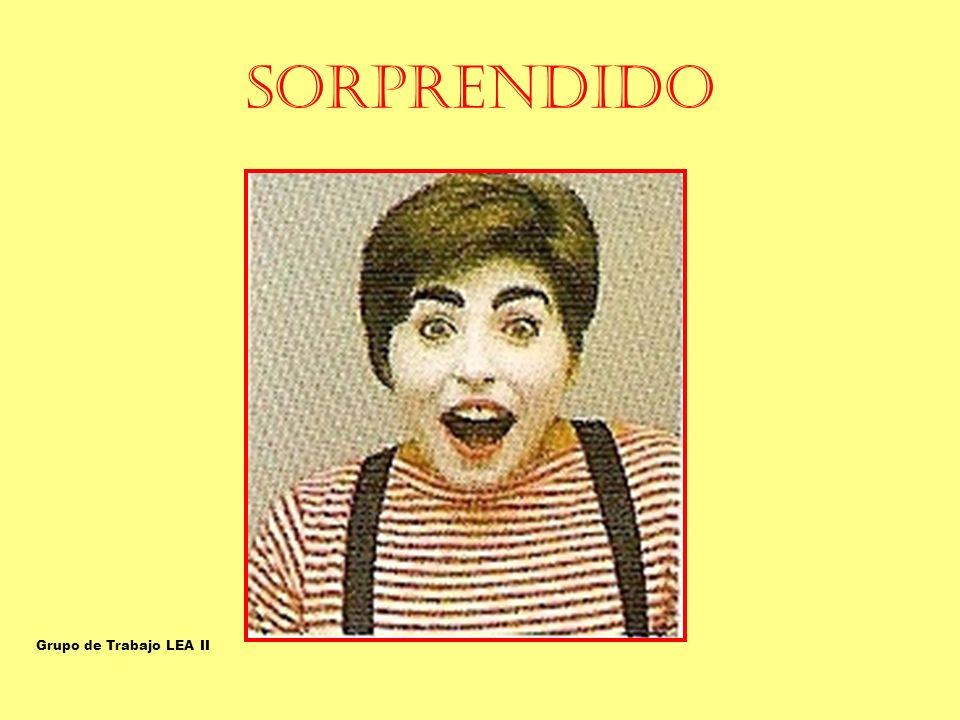 SORPRENDIDO SORPRENDIDO/A Grupo de Trabajo LEA II