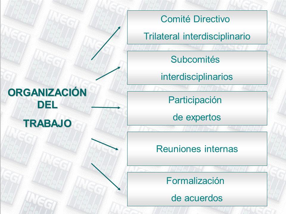Trilateral interdisciplinario