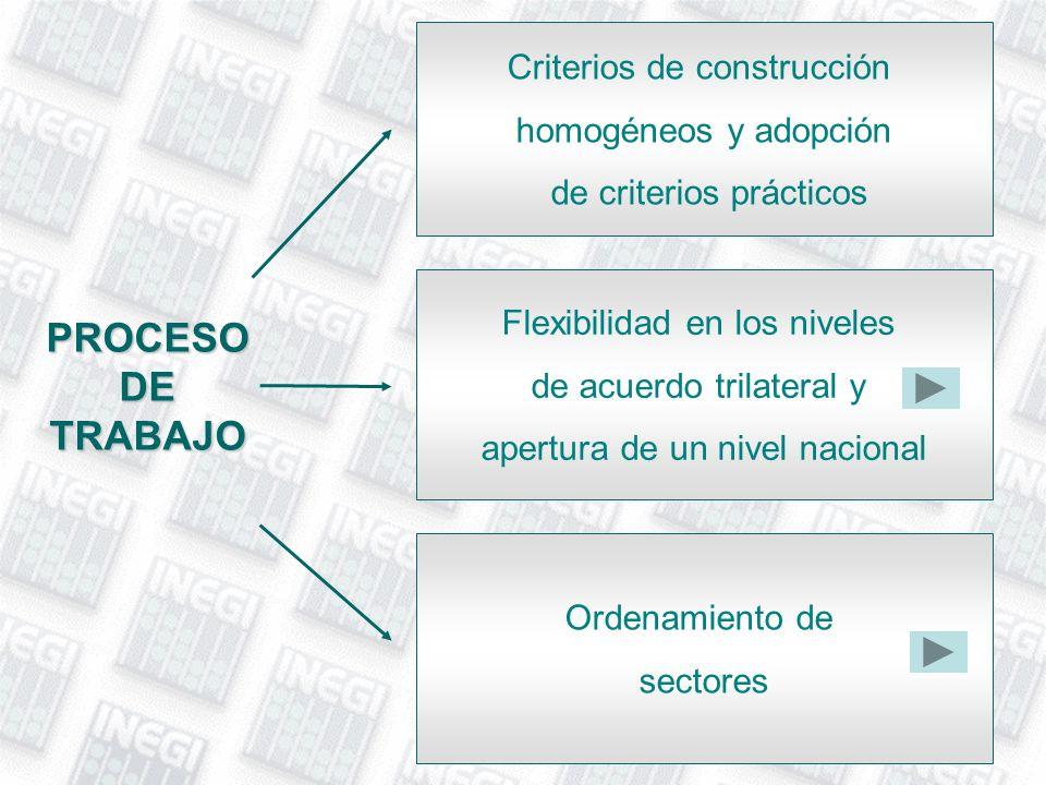PROCESO DE TRABAJO Criterios de construcción homogéneos y adopción