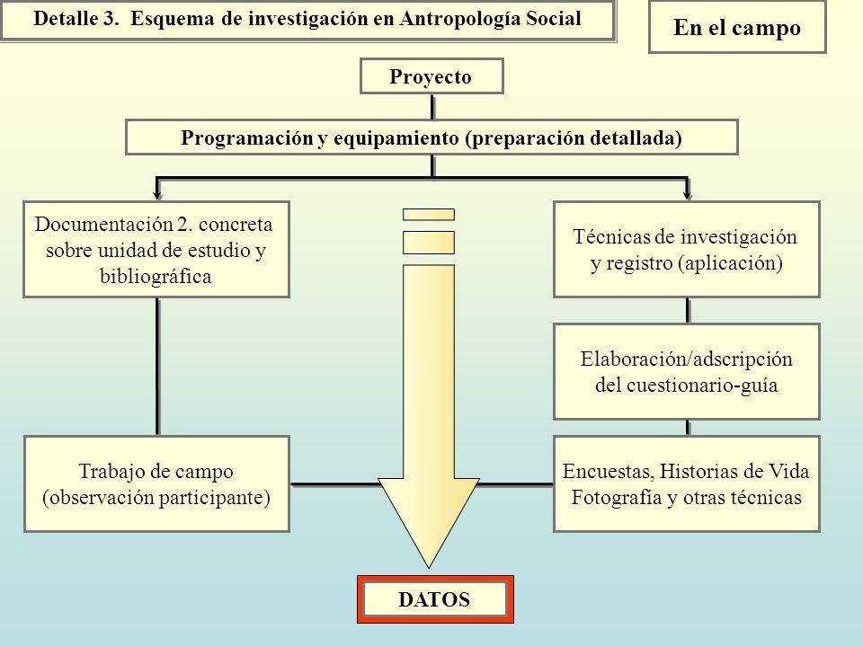 En el campo Detalle 3. Esquema de investigación en Antropología Social
