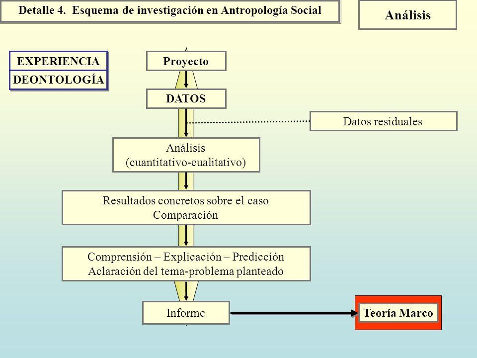 Detalle 4. Esquema de investigación en Antropología Social