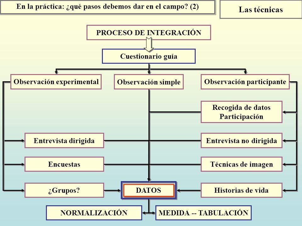 Las técnicas En la práctica: ¿qué pasos debemos dar en el campo (2)