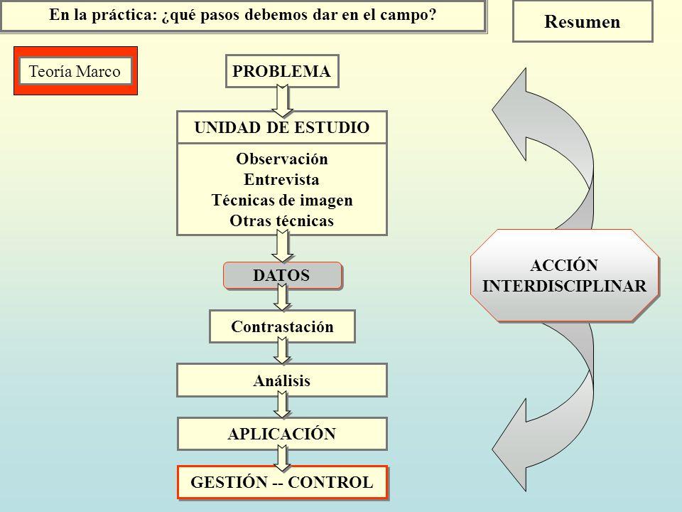 En la práctica: ¿qué pasos debemos dar en el campo