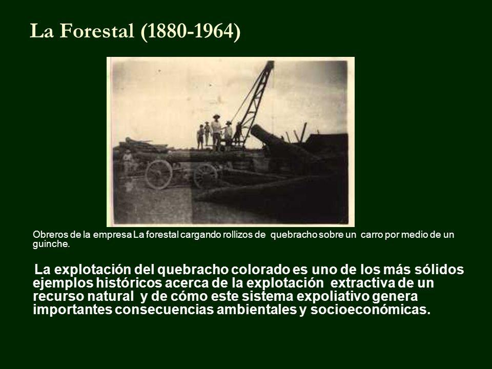La Forestal (1880-1964) Obreros de la empresa La forestal cargando rollizos de quebracho sobre un carro por medio de un guinche.
