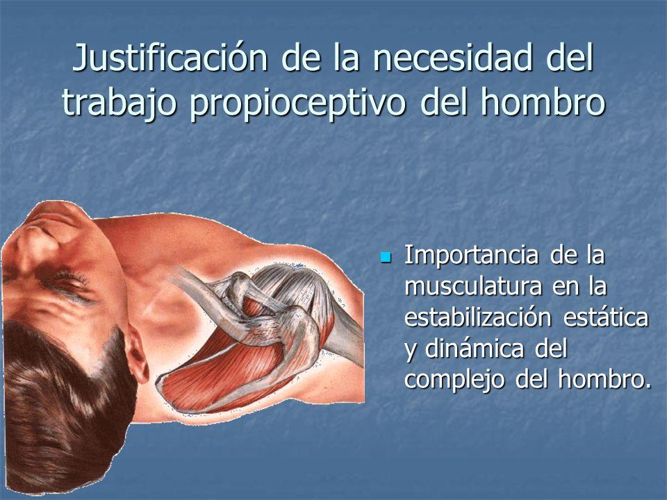 Justificación de la necesidad del trabajo propioceptivo del hombro