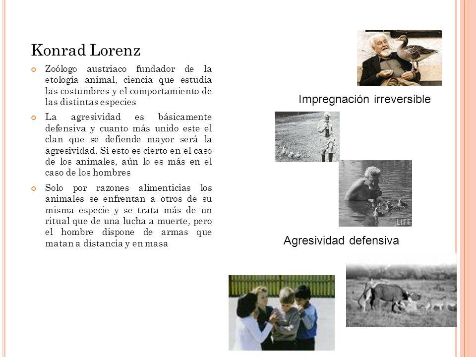 Konrad Lorenz Impregnación irreversible Agresividad defensiva