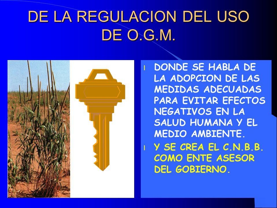 DE LA REGULACION DEL USO DE O.G.M.