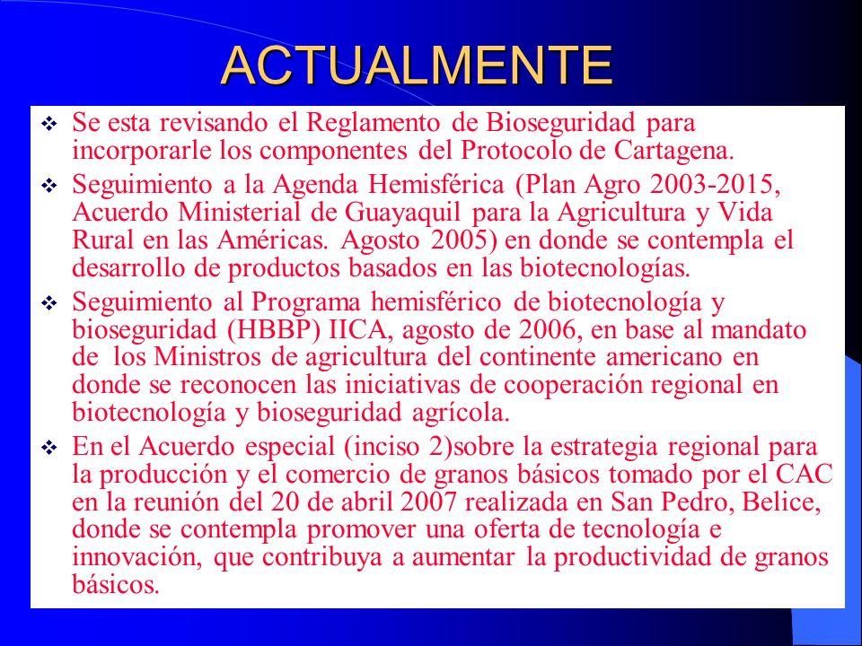 ACTUALMENTESe esta revisando el Reglamento de Bioseguridad para incorporarle los componentes del Protocolo de Cartagena.