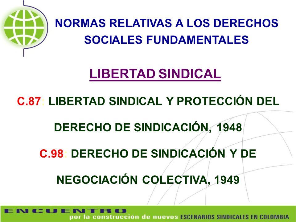 NORMAS RELATIVAS A LOS DERECHOS SOCIALES FUNDAMENTALES