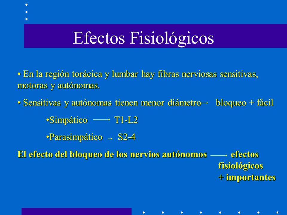 Efectos Fisiológicos En la región torácica y lumbar hay fibras nerviosas sensitivas, motoras y autónomas.