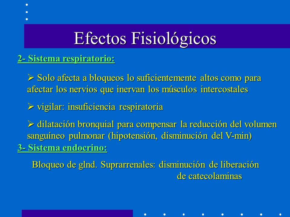 Efectos Fisiológicos 2- Sistema respiratorio: