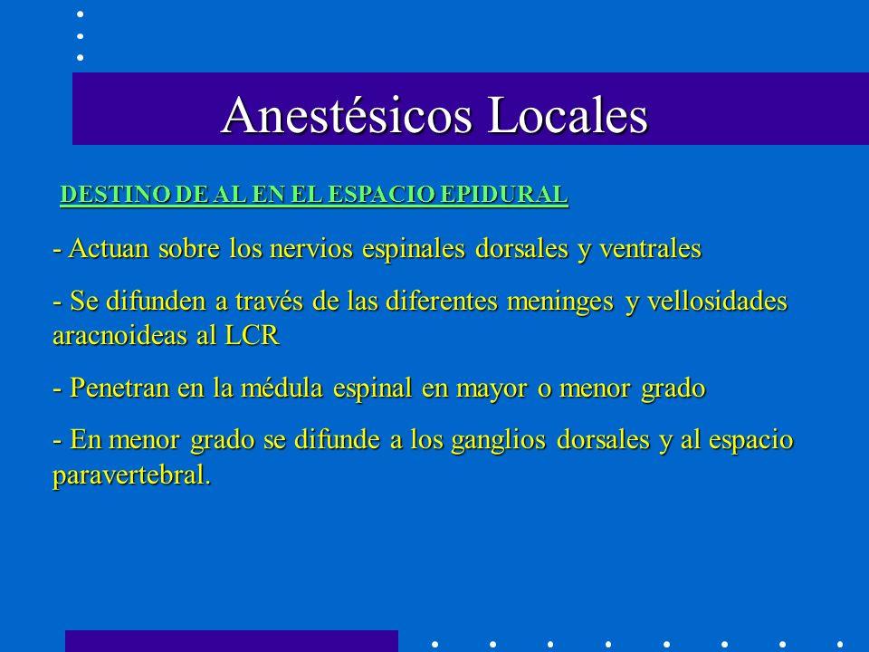 Anestésicos Locales DESTINO DE AL EN EL ESPACIO EPIDURAL. - Actuan sobre los nervios espinales dorsales y ventrales.