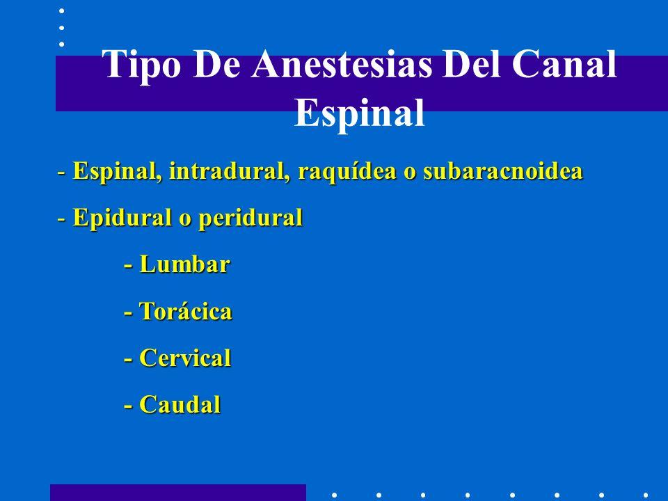 Tipo De Anestesias Del Canal Espinal