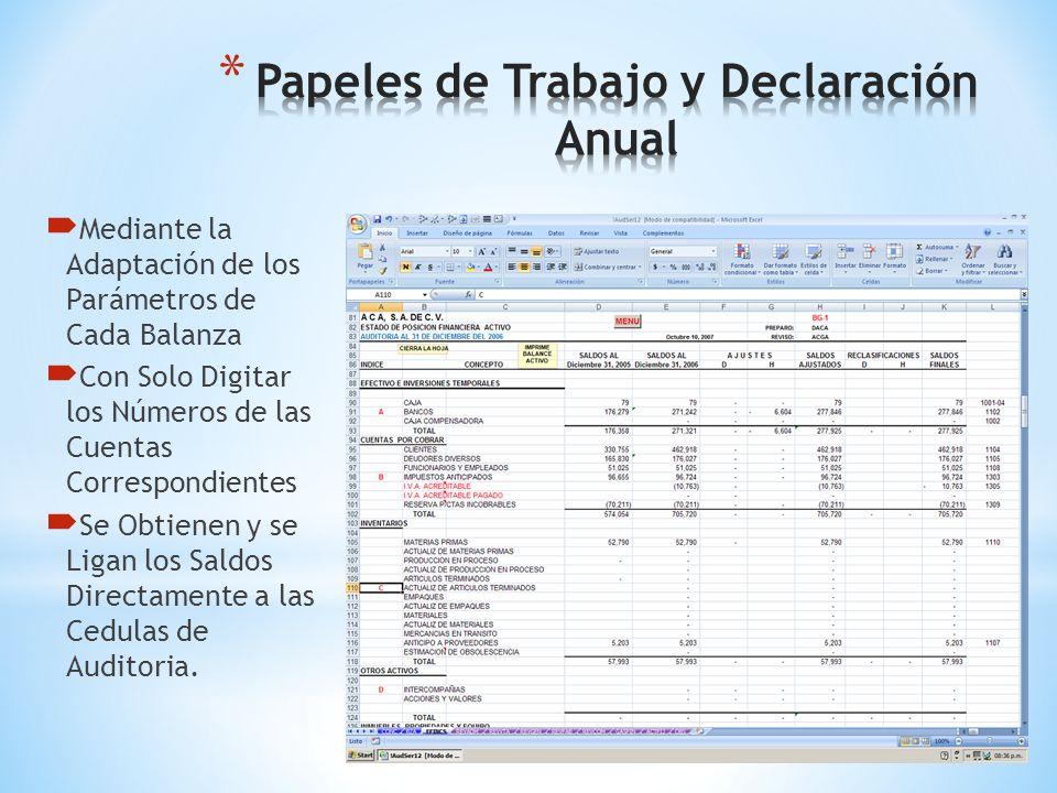 Papeles de Trabajo y Declaración Anual