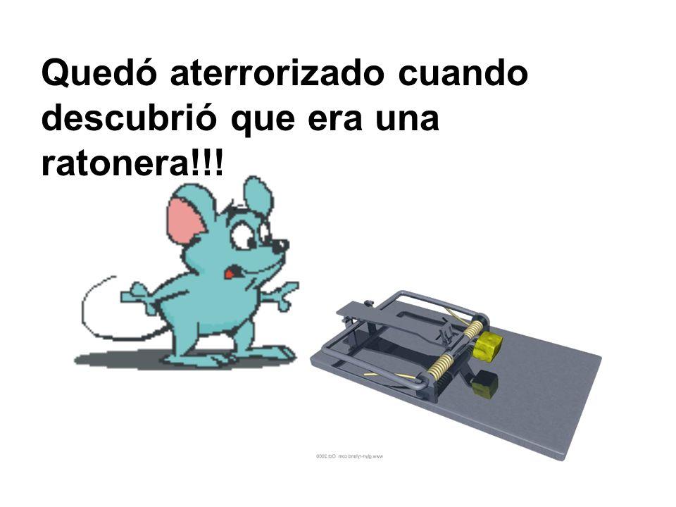 Quedó aterrorizado cuando descubrió que era una ratonera!!!