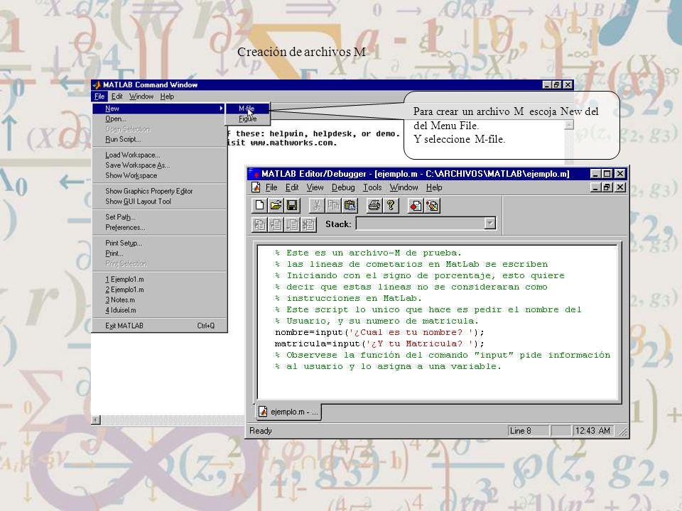 Creación de archivos M Para crear un archivo M escoja New del