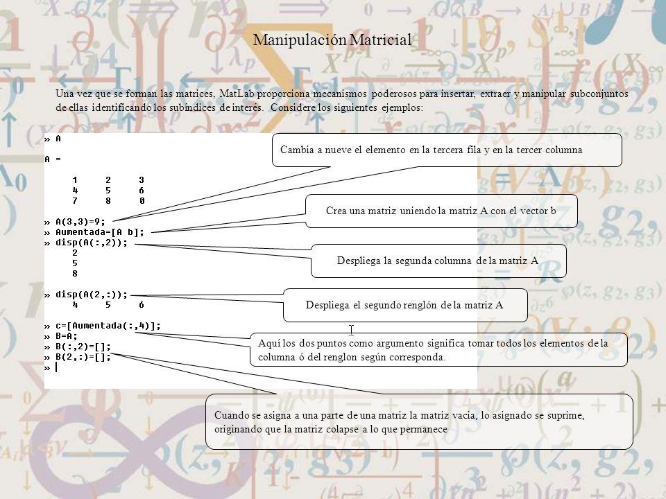 Manipulación Matricial