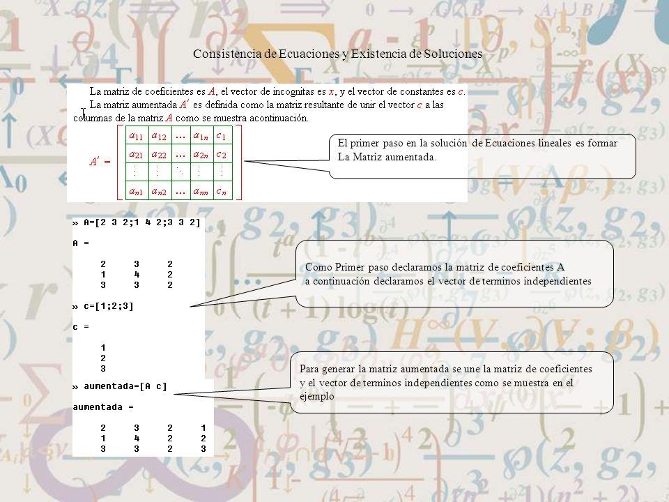 Consistencia de Ecuaciones y Existencia de Soluciones