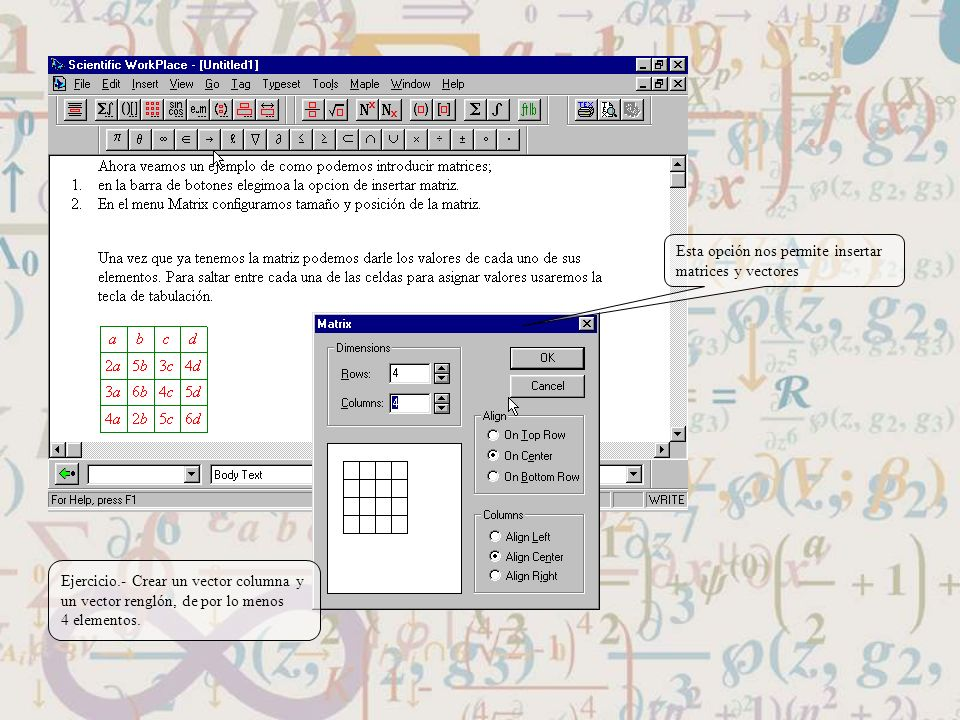 Esta opción nos permite insertar matrices y vectores