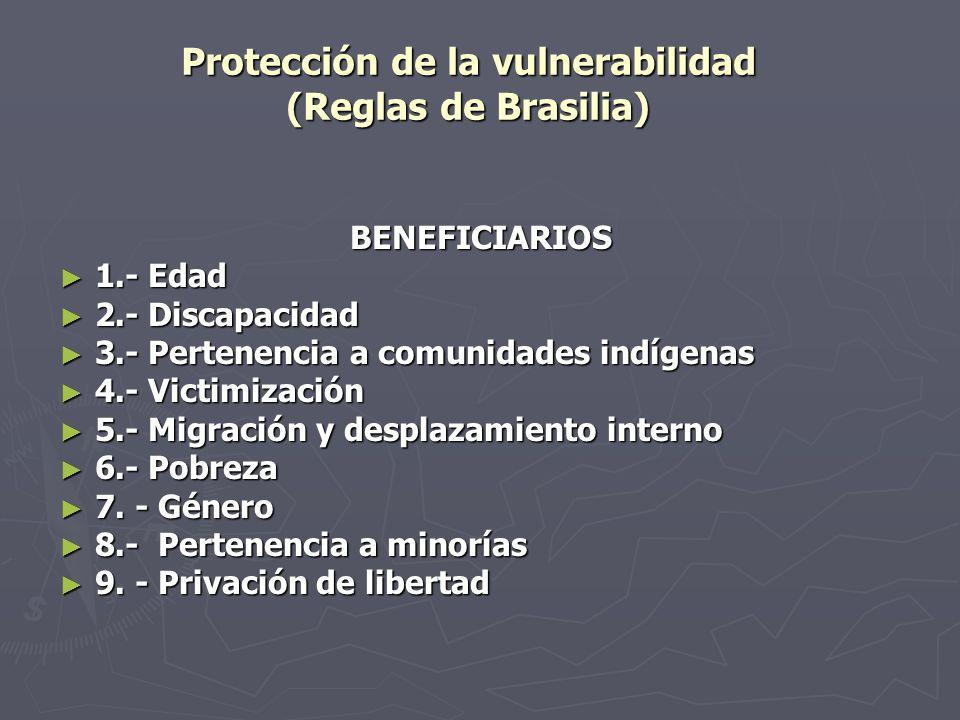 Protección de la vulnerabilidad (Reglas de Brasilia)