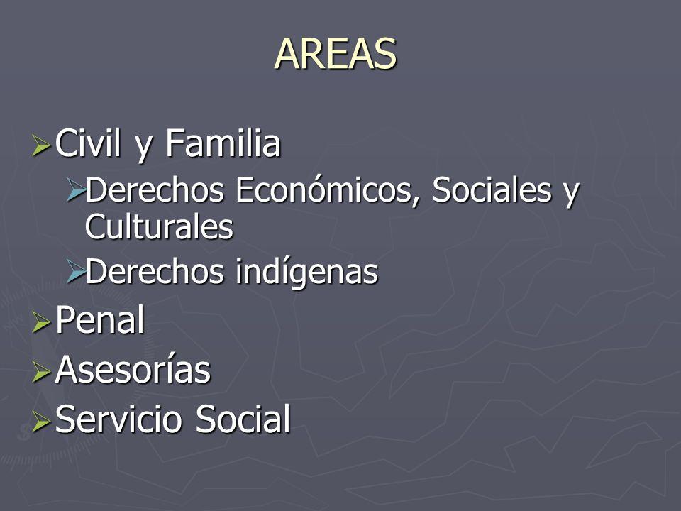 AREAS Civil y Familia Penal Asesorías Servicio Social