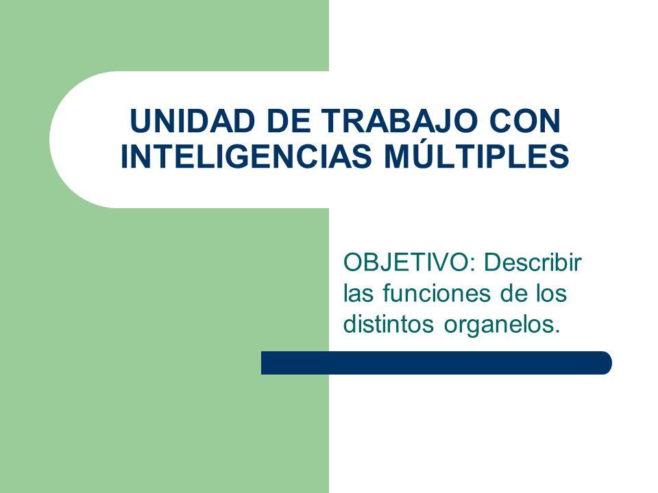 UNIDAD DE TRABAJO CON INTELIGENCIAS MÚLTIPLES