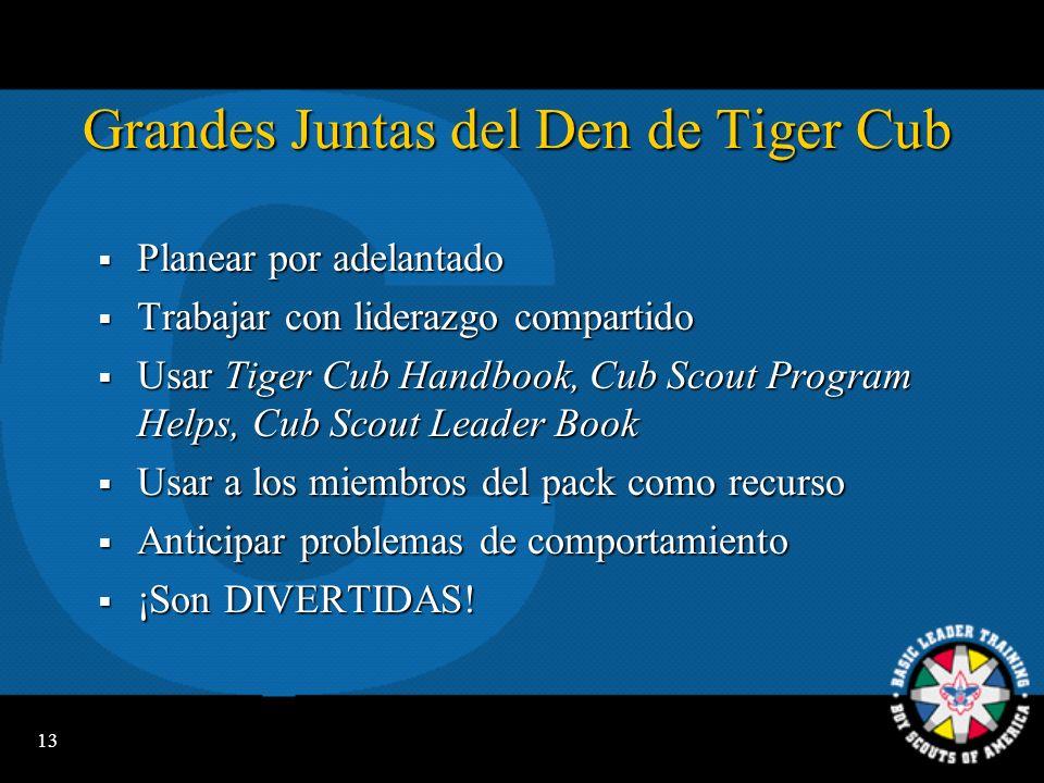 Grandes Juntas del Den de Tiger Cub