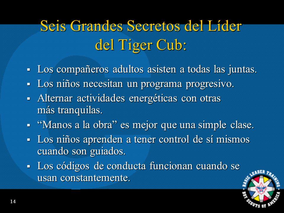 Seis Grandes Secretos del Líder del Tiger Cub: