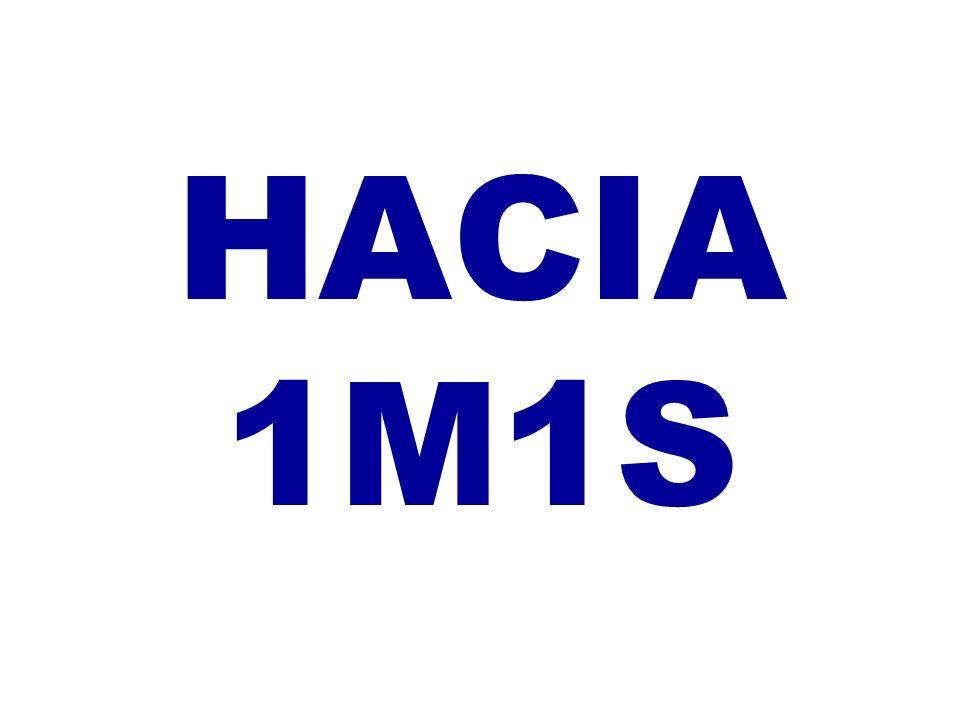 HACIA 1M1S