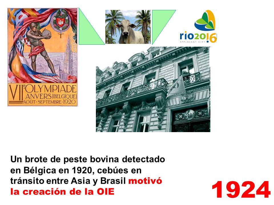 Un brote de peste bovina detectado en Bélgica en 1920, cebúes en tránsito entre Asia y Brasil motivó la creación de la OIE
