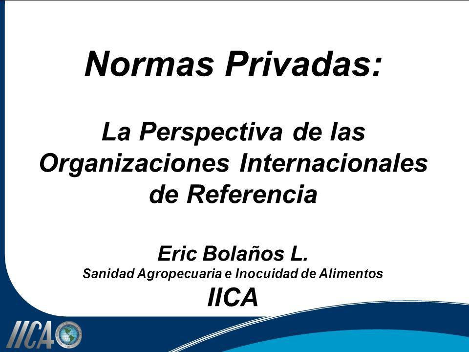 Normas Privadas: La Perspectiva de las Organizaciones Internacionales de Referencia Eric Bolaños L.
