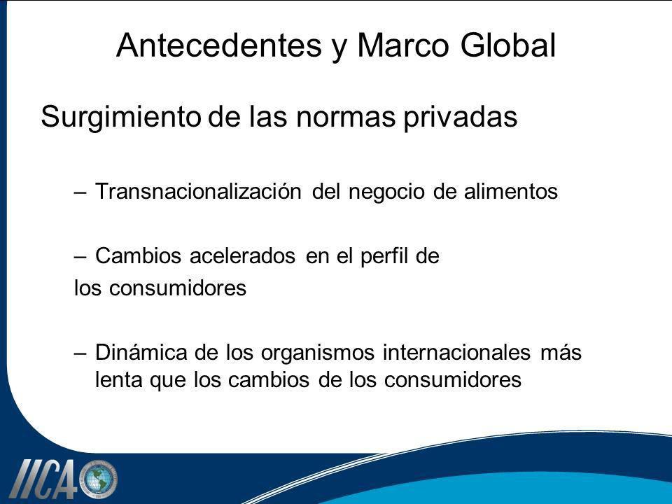 Antecedentes y Marco Global