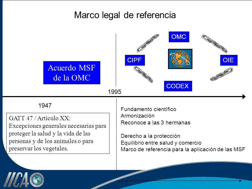 Marco legal de referencia