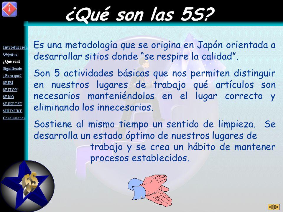 ¿Qué son las 5S Es una metodología que se origina en Japón orientada a desarrollar sitios donde se respire la calidad .