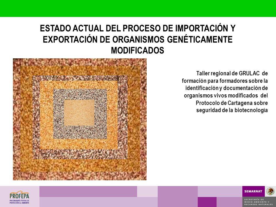 ESTADO ACTUAL DEL PROCESO DE IMPORTACIÓN Y EXPORTACIÓN DE ORGANISMOS GENÉTICAMENTE MODIFICADOS