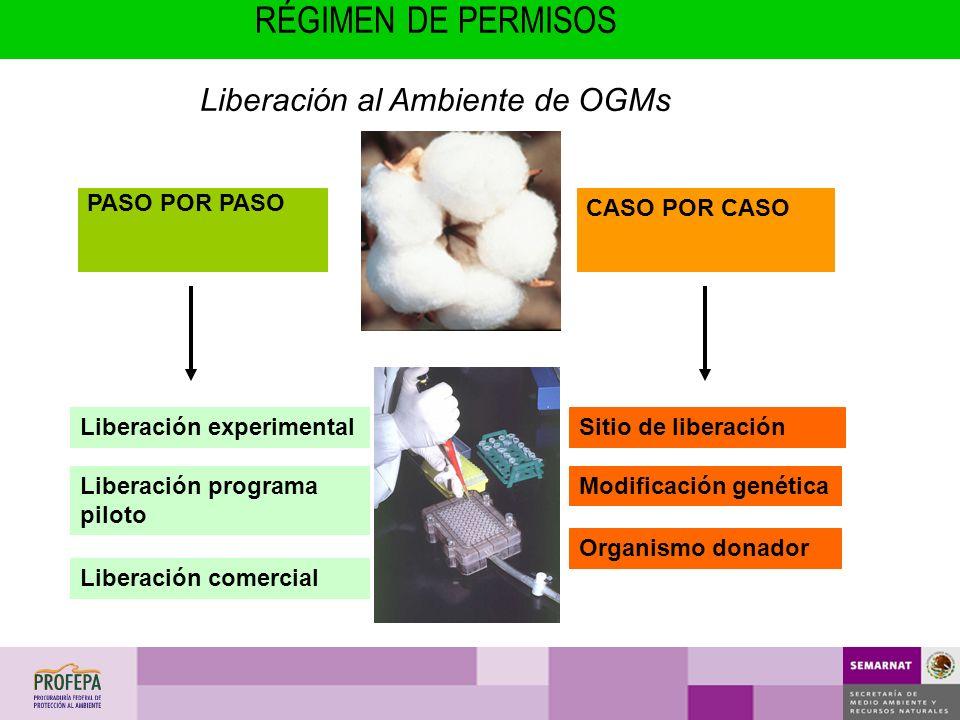 Liberación al Ambiente de OGMs