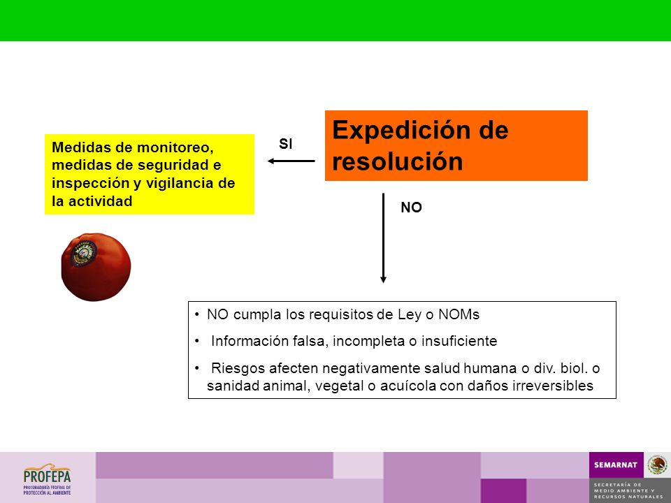 Expedición de resolución
