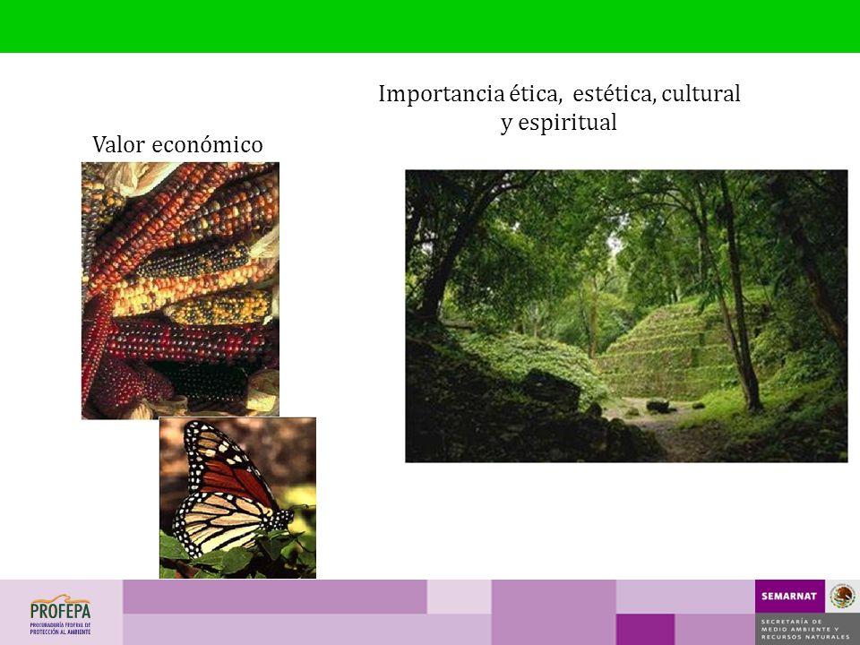 Importancia ética, estética, cultural y espiritual