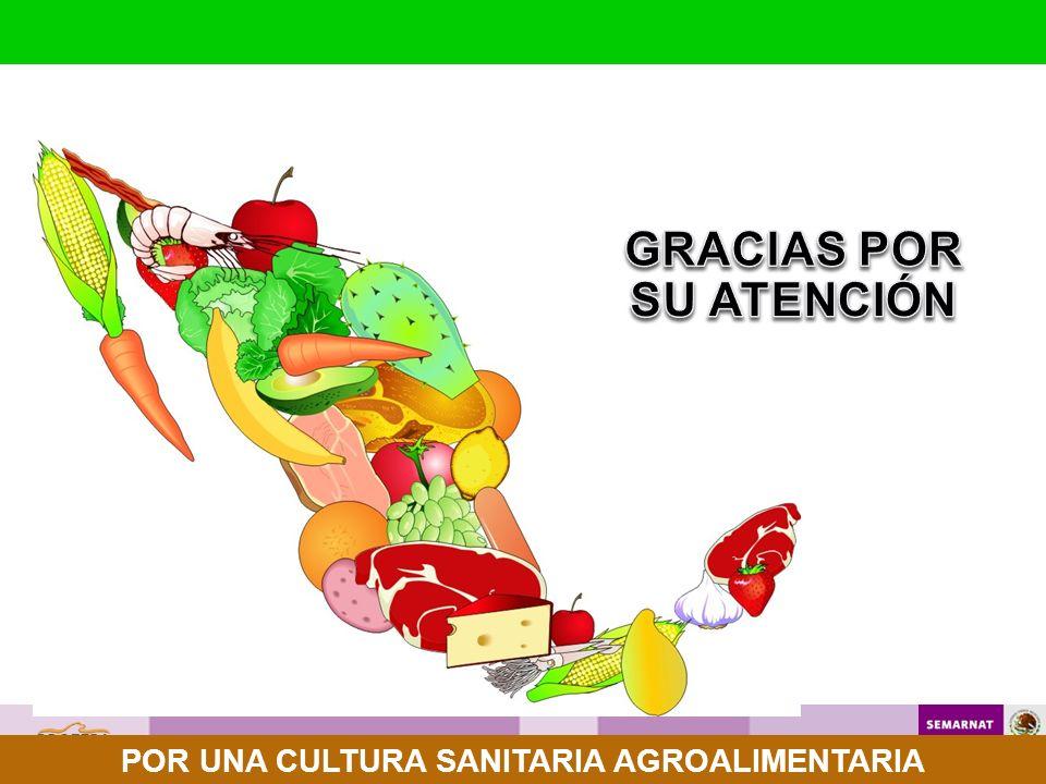 GRACIAS POR SU ATENCIÓN POR UNA CULTURA SANITARIA AGROALIMENTARIA