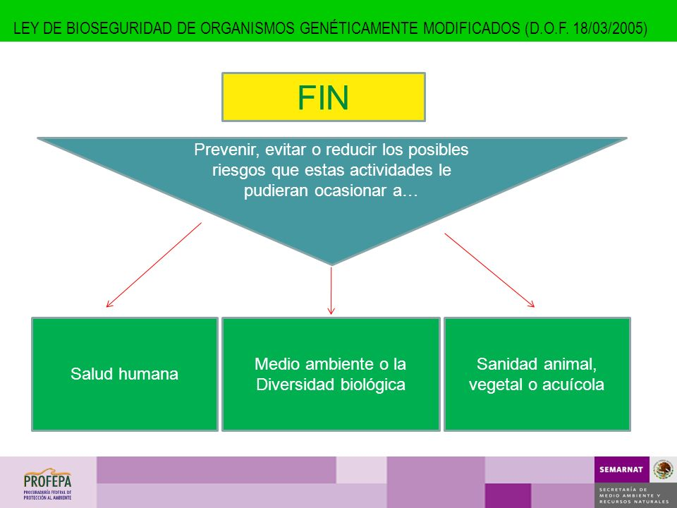 LEY DE BIOSEGURIDAD DE ORGANISMOS GENÉTICAMENTE MODIFICADOS (D. O. F